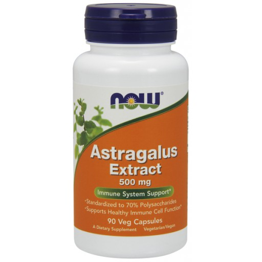Astragalus Extract 500 mg - 90 Veg Capsules